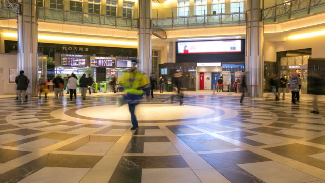 Time-lapse: Tokyo railway station Counter video
