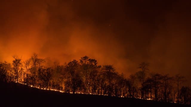 4K T/L Timelapse Wildfire line on hillside at night video