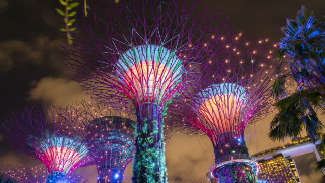 4 k timelaspe: supertree garten in der nacht. - bucht stock-videos und b-roll-filmmaterial