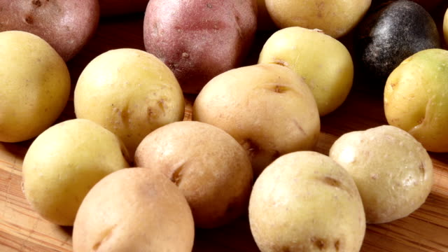 Tiny multi colored potatoes Multi-colored tiny potatoes on a cutting board red potato stock videos & royalty-free footage