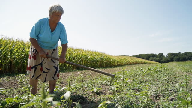 HD DOLLY: Tired Woman Working In The Field video
