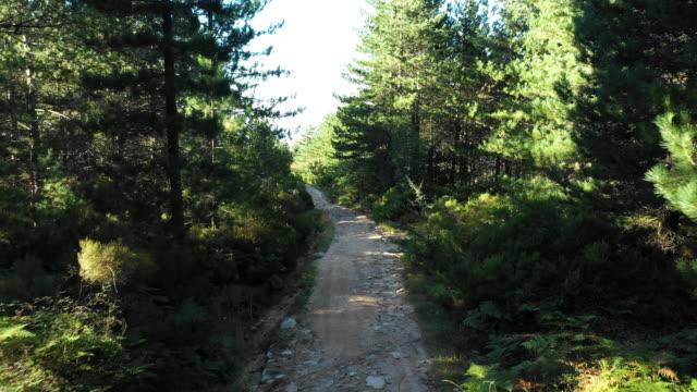 vidéos et rushes de titolo: video dessus, une vue aérienne d'un chemin de terre entre les montagnes verdoyantes du mont limbara en sardaigne, italie. - randonnée équestre