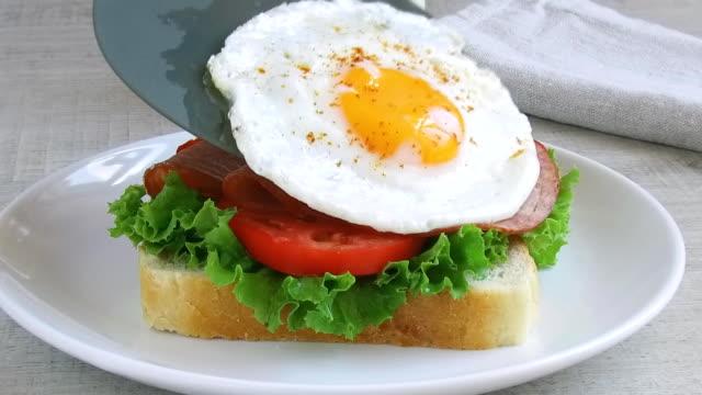 vídeos de stock e filmes b-roll de toast sandwich salad tomato salami egg  lay outt - sanduíche