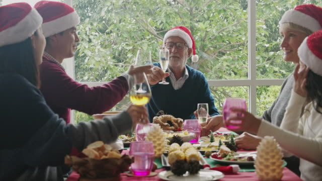 toast to our future of happiness. - pranzo di natale video stock e b–roll