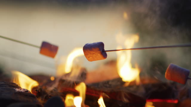 Toasting marshmallows over a campfire Toasting marshmallows over a campfire. marshmallow stock videos & royalty-free footage