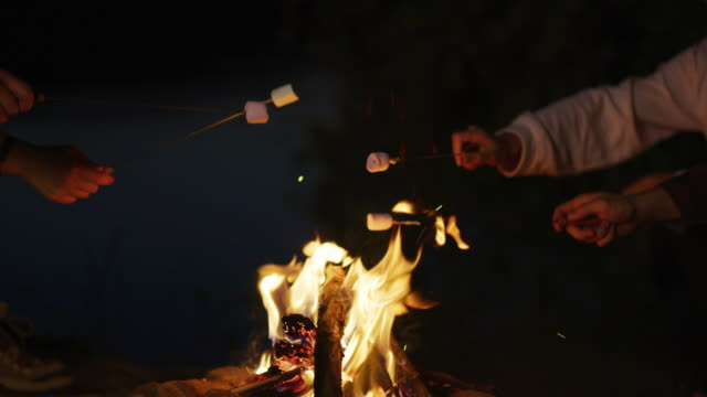 Toasting marshmallows over a campfire Toasting marshmallows over a campfire, at night. marshmallow stock videos & royalty-free footage