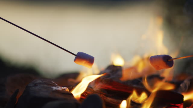 Toasting marshmallows over a fire Toasting marshmallows over a fire. marshmallow stock videos & royalty-free footage
