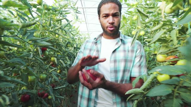 vidéos et rushes de aujourd'hui, je vais vous dire mes secrets de jardinage. - expliquer