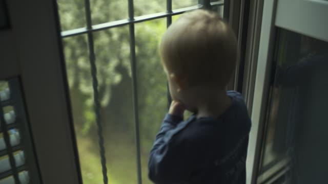 kleinkind junge schaut aus dem fenster. in zeitlupe erschossen - moskitonetz stock-videos und b-roll-filmmaterial