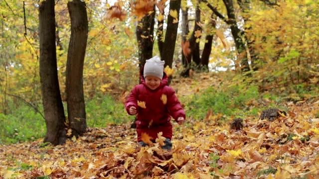 Toddler boy playing with autumn leaves in park video