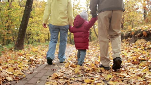 toddler boy walking with grandparents in autumn - grandparents stock videos & royalty-free footage