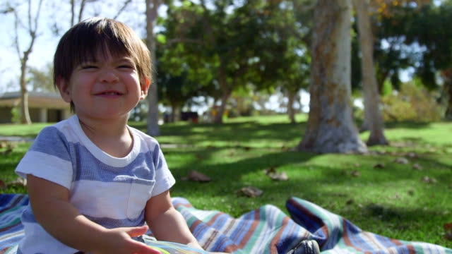 Toddler Eating on Picnic Blanket A happy toddler smiles at the camera while he he eats snacks from a zip lock bag snack stock videos & royalty-free footage