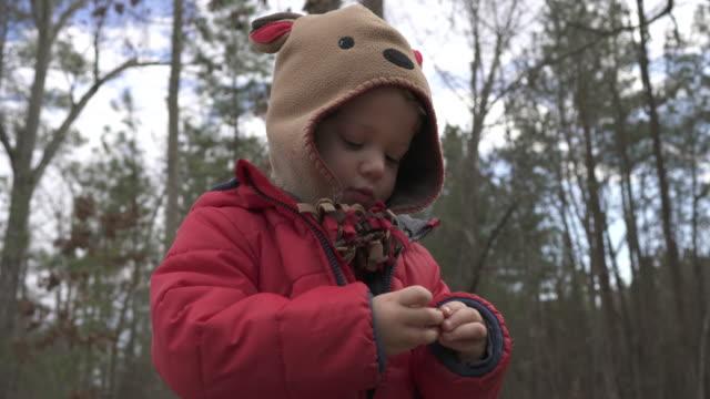 toddler exploring acorn seed - жакет стоковые видео и кадры b-roll