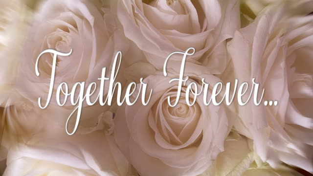 'Together Forever' Text Message Animation, 4K Video Loop.