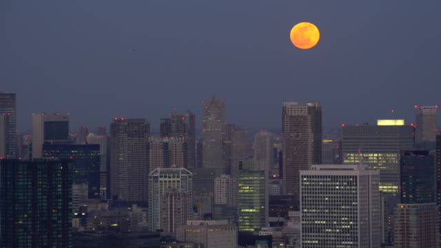 Tokyo Cityscape - Moon rising above the skyscrapers