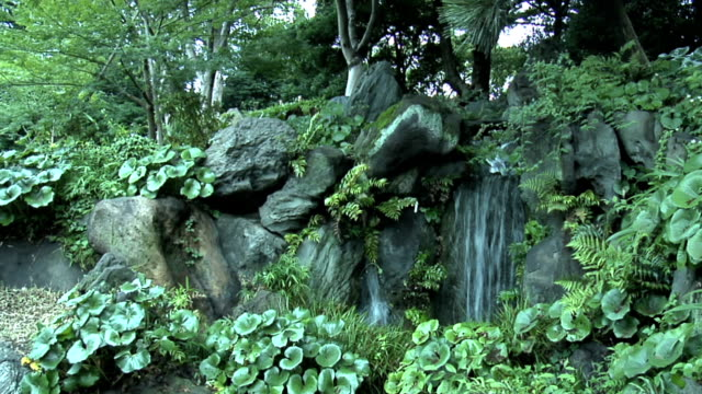Tokyo Imperial Garden 16 The waterfalls in the Imperial Garden in Tokyo, Japan ornamental garden stock videos & royalty-free footage