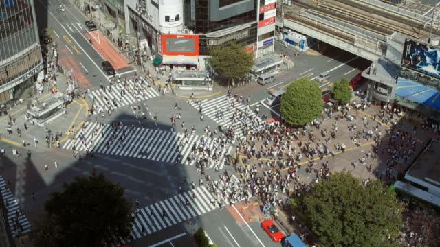 高清東京澀谷十字路口日本 - 澀谷交叉點 個影片檔及 b 捲影像