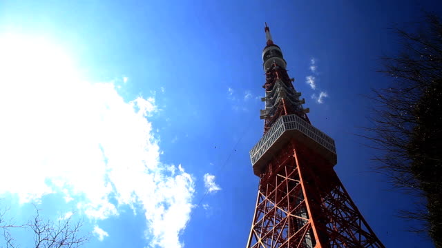 東京タワー撮影右の中間位置 - 東京タワー点の映像素材/bロール