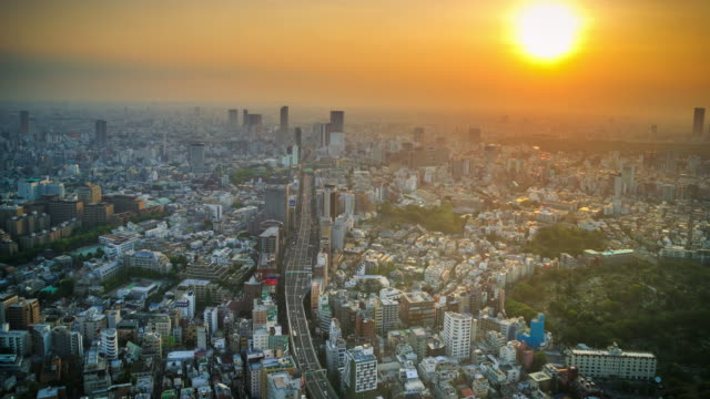 tokyo viewpoint sunset - время дня стоковые видео и кадры b-roll