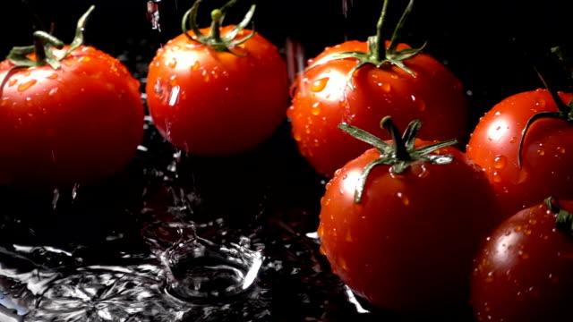 Tomato Splashing Into Water On Black Background video