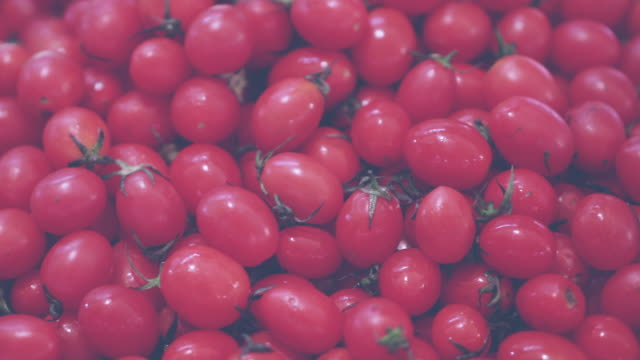 tomato vintage tone tomato vintage tone tomato salad stock videos & royalty-free footage