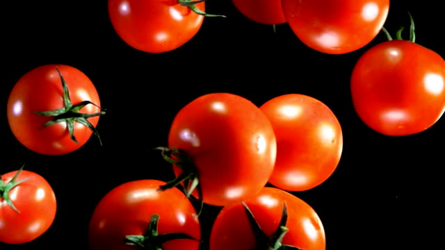tomatoes bouncing against to the camera - ketchup video stock e b–roll