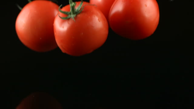 Tomatoes splashing into water on black background video