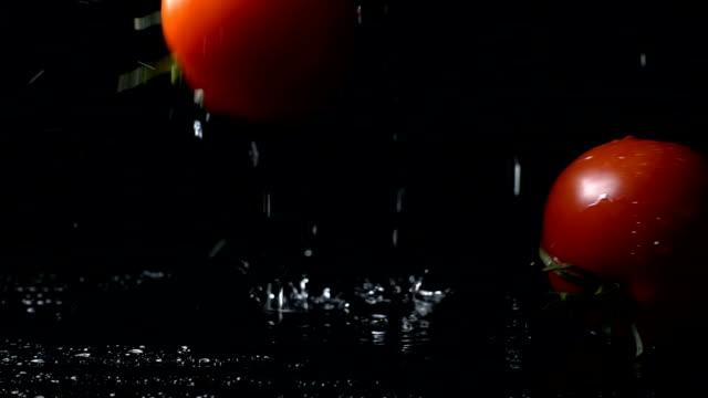 Tomatoes Splashing Into Water On Black Blackground video
