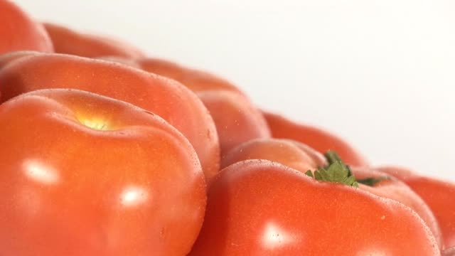 tomatoes video