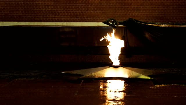 Tomb of the Unknown Soldier and Eternal Flame in the Alexander Garden near Kremlin. Moscow, Russia video