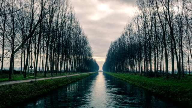 toned timelapse of a canal and trees reflected in water video