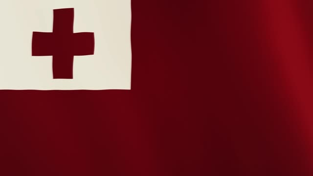 Tonga flag waving animation. Full Screen. Symbol of the country video