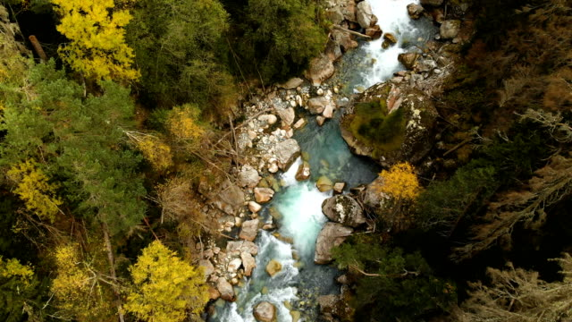 Top aerial view of a fast mountain river flowing in the coniferous autumn forest