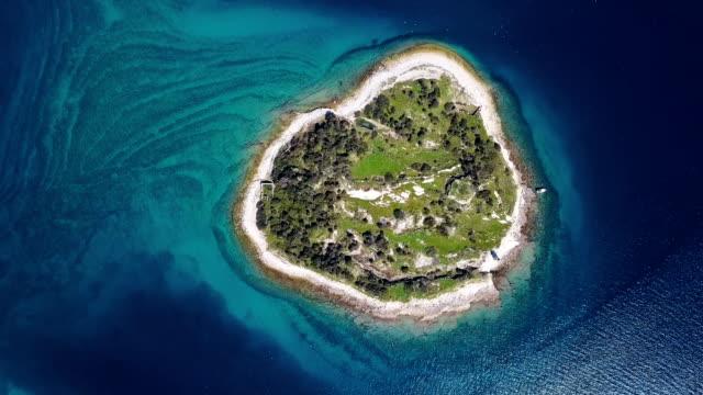 Top aerial view of seagulls flying over small desert island in Brijuni islands, Istria, Croatia.