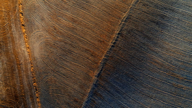 Top Down Aerial Shot of Harvested Fields with Abstract Patterns on the Ground. video