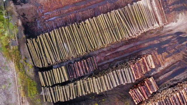Top Down Aerial View of Lumber Yard video