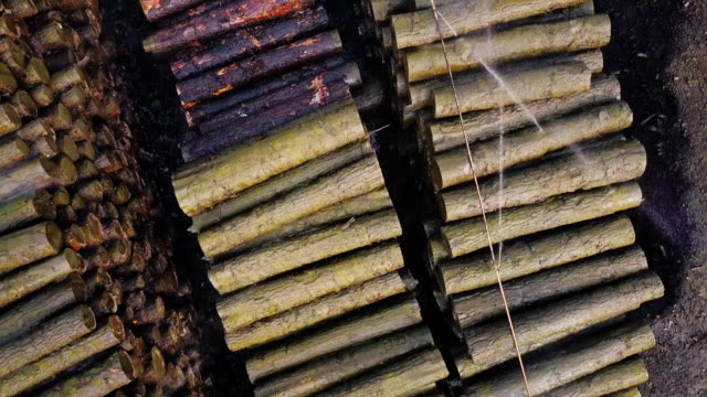 Top Down Aerial View of Lumber Yard Top down 4K drone shot of a lumber yard filled with stacks of freshly cut timber. Water is being sprayed onto the felled tree trunks to dampen any fires. timber stock videos & royalty-free footage