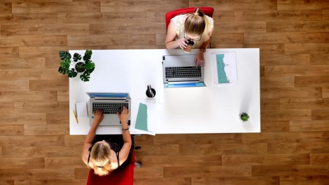 Top down shot, two hard-working females typying on their laptops and sitting at the table in the wooden studio Top down shot, two hard-working females typying on their laptops and sitting at the table in the wooden studio electron micrograph stock videos & royalty-free footage