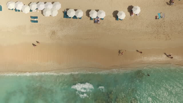 Top down stationary view of sun loungers, umbrellas and deck chairs on waters edge video