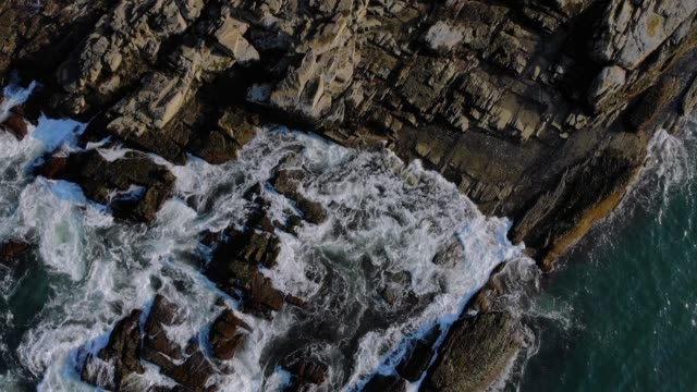 Top Down Tilt Up View of Portland Head Lighthouse video