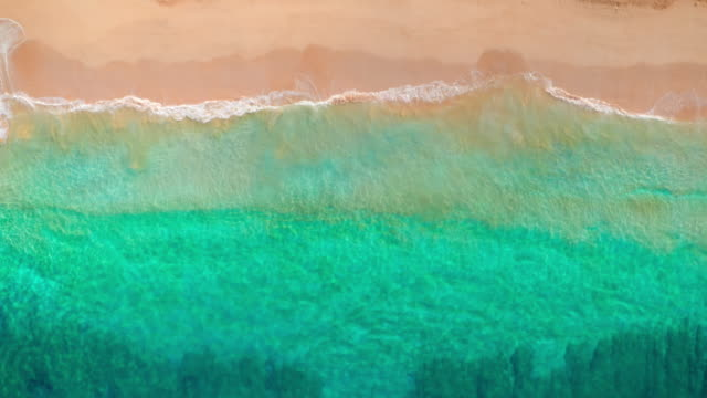 Top down tropical aerial beach view of waves breaking on white sand beach
