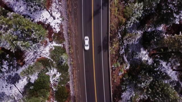 トップダウンの森の中の道の眺め - カリフォルニアシエラネバダ点の映像素材/bロール