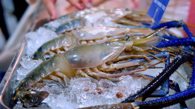 översta ingrediensen - fisk och skaldjur bildbanksvideor och videomaterial från bakom kulisserna