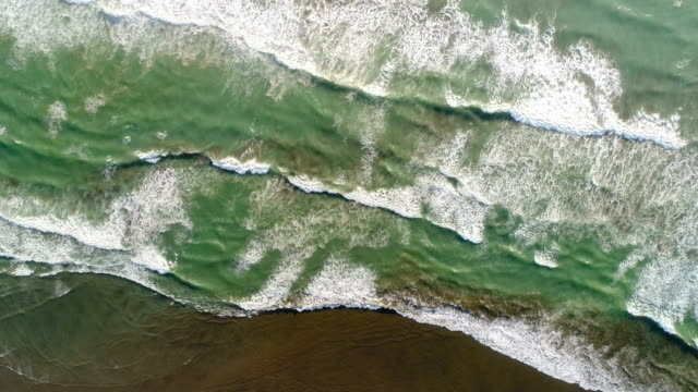 Top looking down at waves splashing on beach. West coast beach Muriwai in Auckland, New Zealand. coastal feature stock videos & royalty-free footage