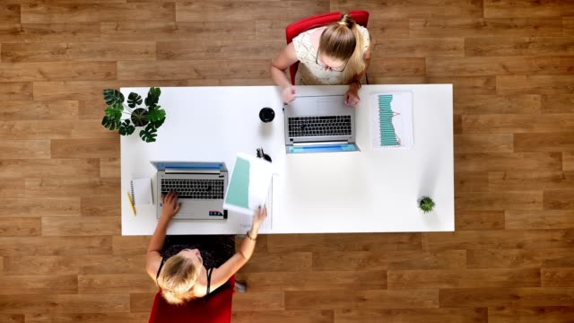 Top shot two woman are working while sitting next to each other at the table focused on working process, using laptops Top shot two woman are working while sitting next to each other at the table focused on working process, using laptops electron micrograph stock videos & royalty-free footage