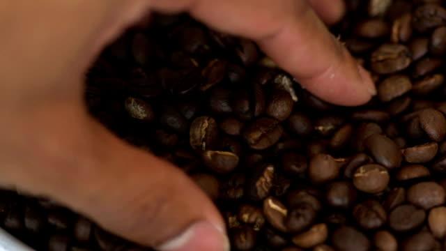 top view: human touch coffee bean - кофеин стоковые видео и кадры b-roll
