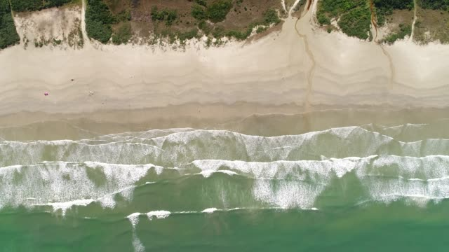top view of a paradise beach - aerial beach stock videos & royalty-free footage