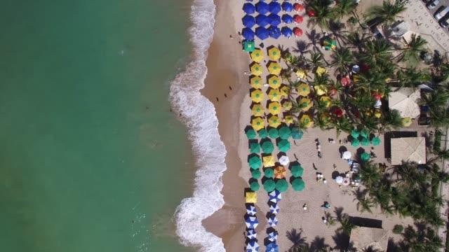 top view of a tropical beach - portorico video stock e b–roll