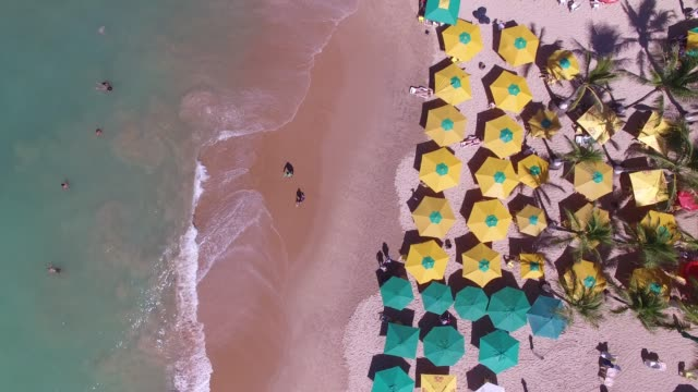 Top View of a Tropical Beach Top View of a Tropical Beach turks and caicos islands stock videos & royalty-free footage