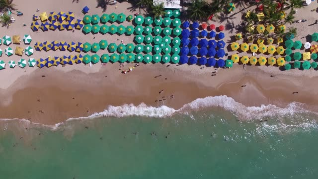 Top View of Bahia beach, Brazil video